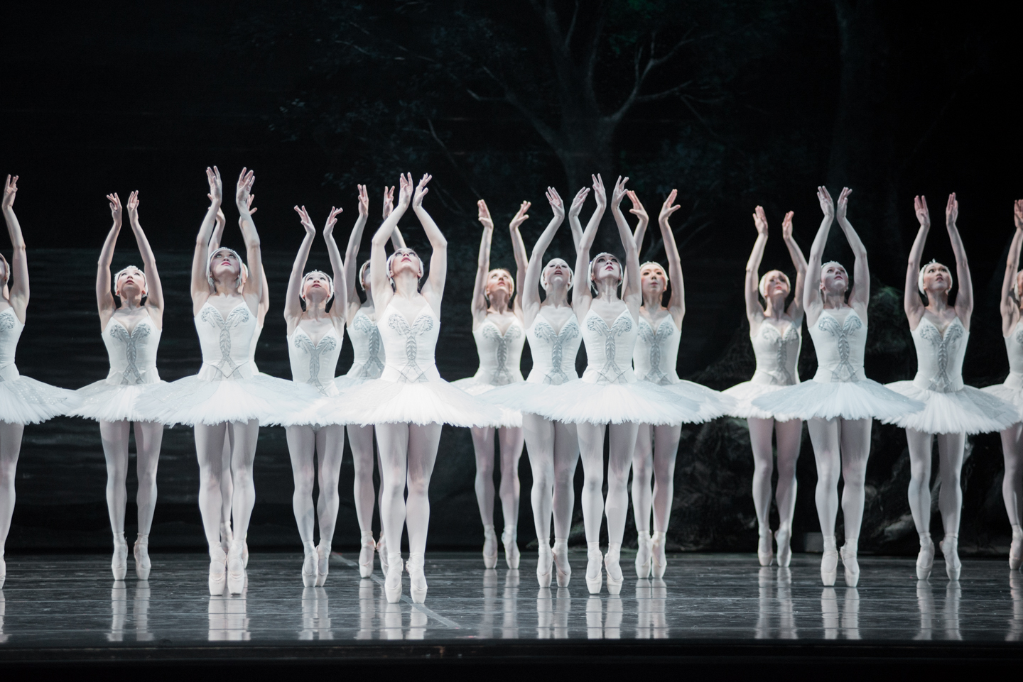 Royal Winnipeg Ballet Company in Swan Lake, 2015; Photo by Samanta Katz